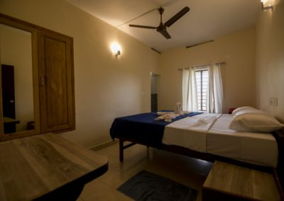 Dheemahi-Ayurvedic-Double-room